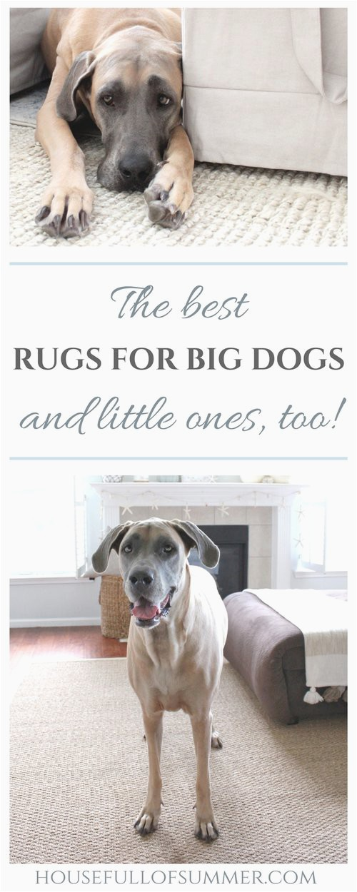 The Best Rugs for Big Dogs and little ones too House Full of Summer blog durable rugs area rugs decorating with pets dog friendly decor home interior ideas rugs that last affordable rugs neutral decor coastal home