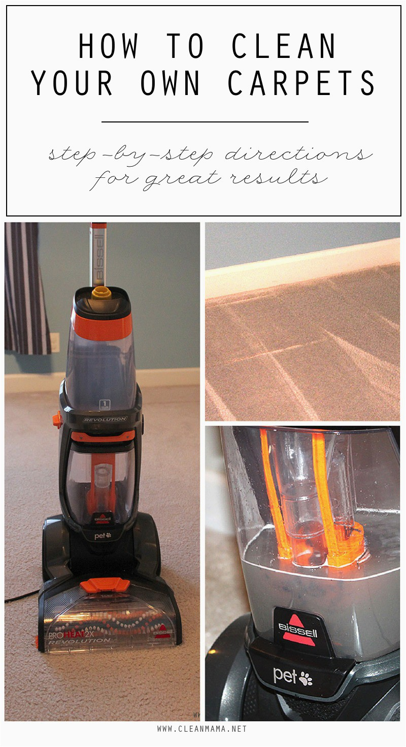 How to Clean Your Own Carpets Clean Mama 1