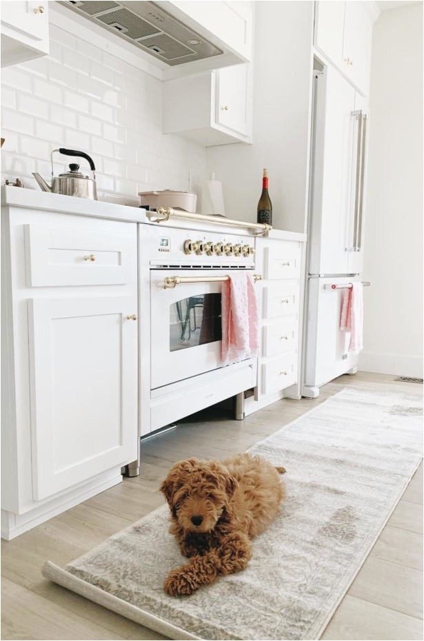 Best Type Of area Rug for Dogs 5 area Rug Tips to Keep Wood Floors Pristine