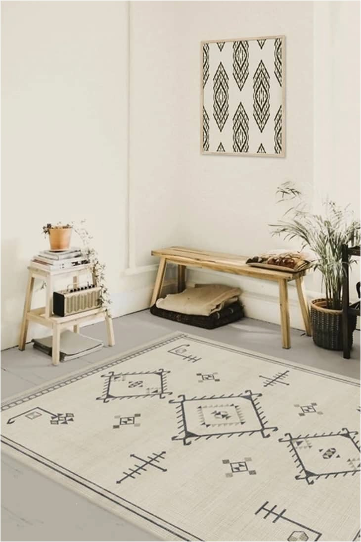 Best Type Of area Rug for Dogs 5 Best Rugs for Pets top Dog Friendly and Cat Friendly