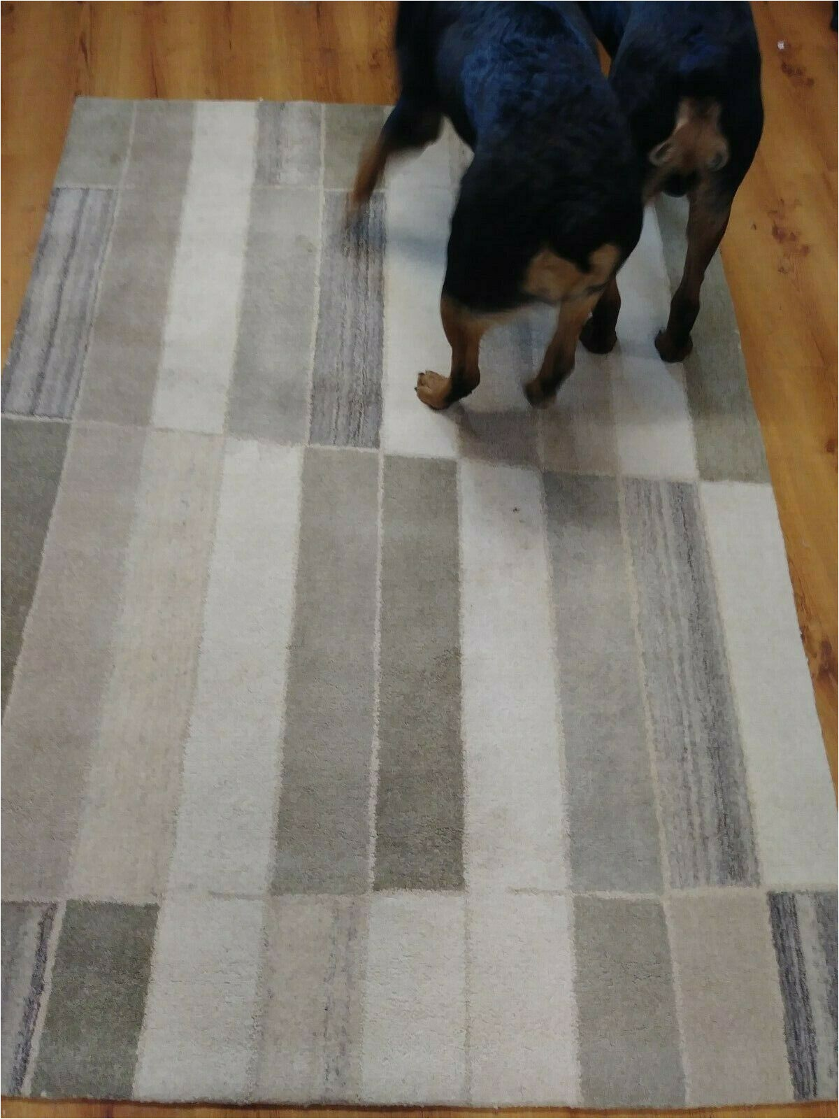 Project 62 area Rug 7×10 Project 62 Abstract Tufted 7 X 10 area Rug