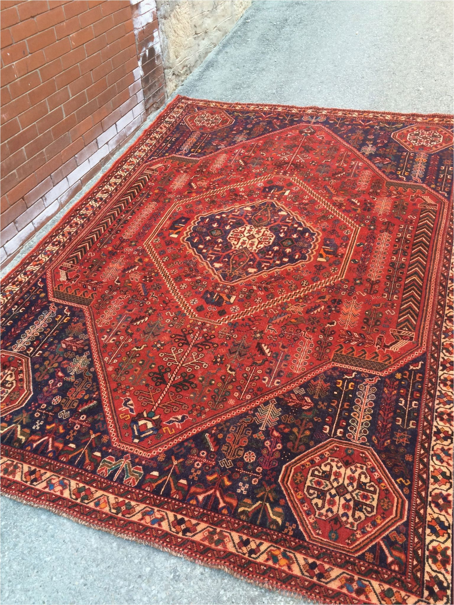 7 x 9 dining room rugs