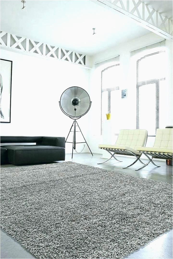 Big Lots area Rugs On Sale the Dump Rugs Medium Size Living Sale Kitchen Big for
