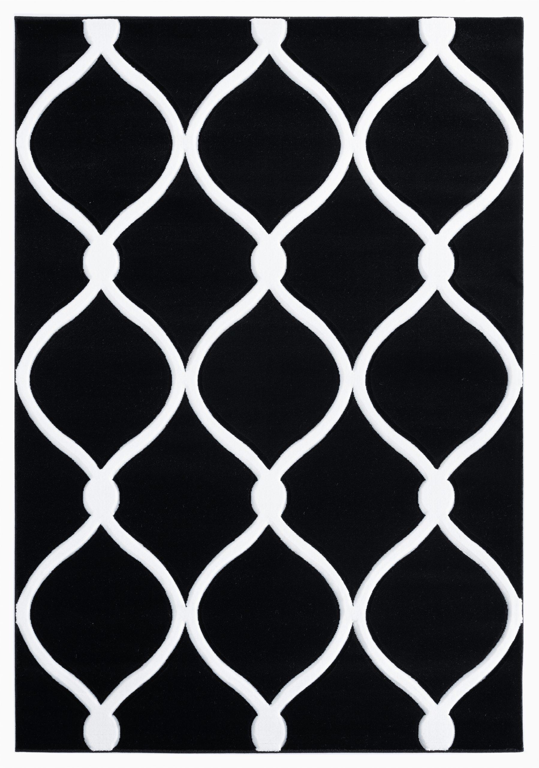 fishback geometric blackwhite area rug