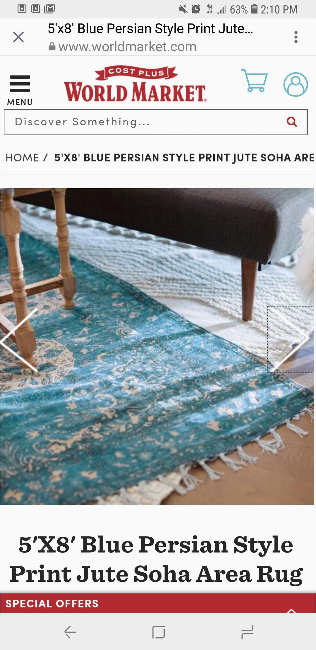 Cost Plus World Market area Rugs Blue Persian 4ug