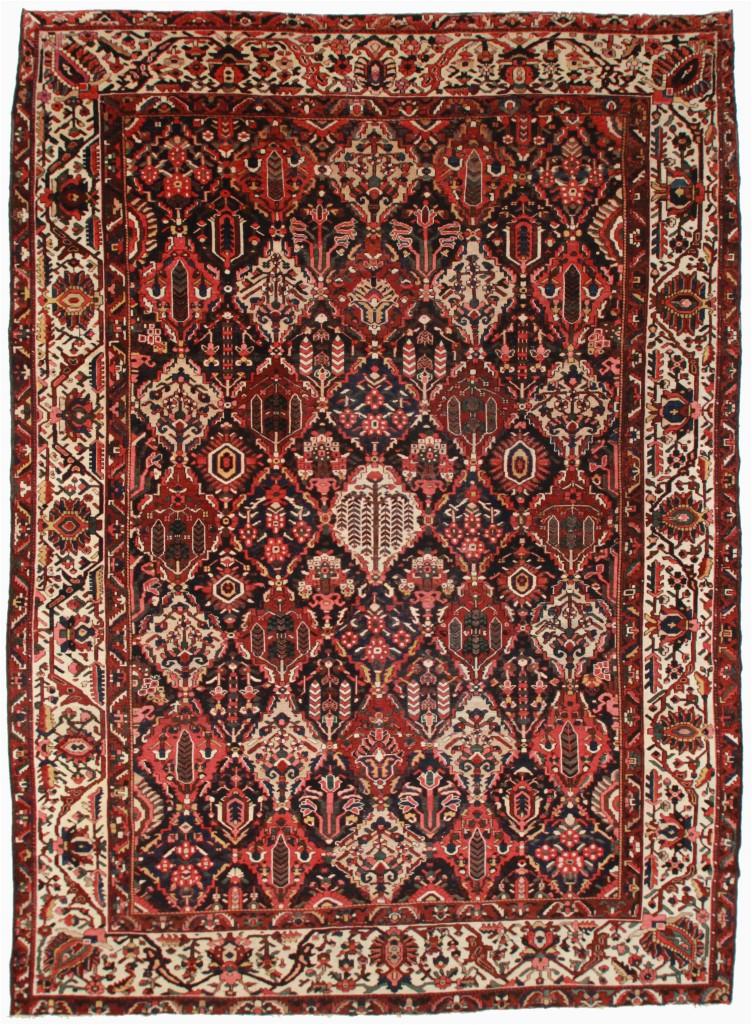 persian baktiari 11x15 rug
