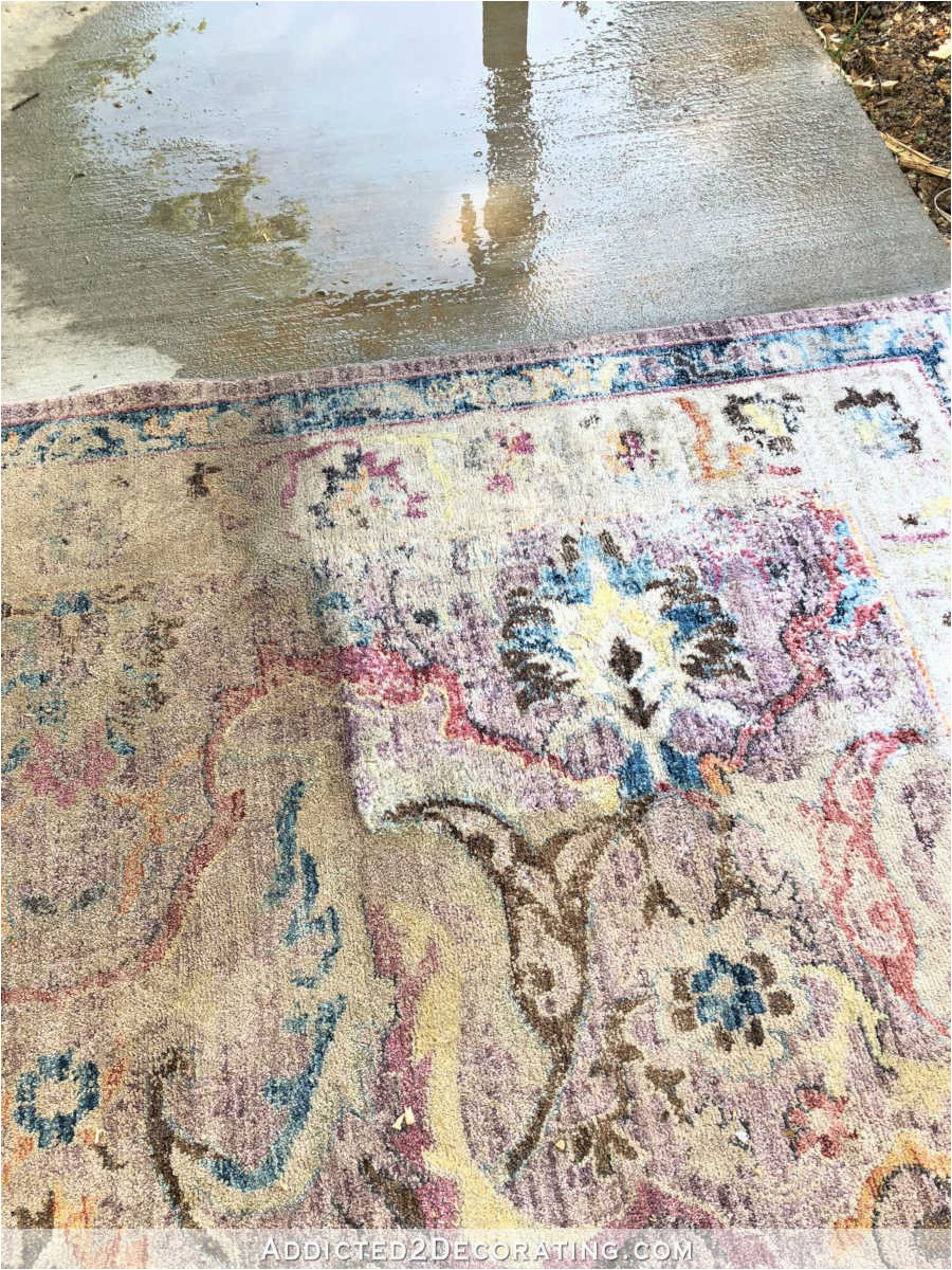 Area Rugs that Can Be Washed How to Clean An area Rug the Fun Way Hint Get Out Your