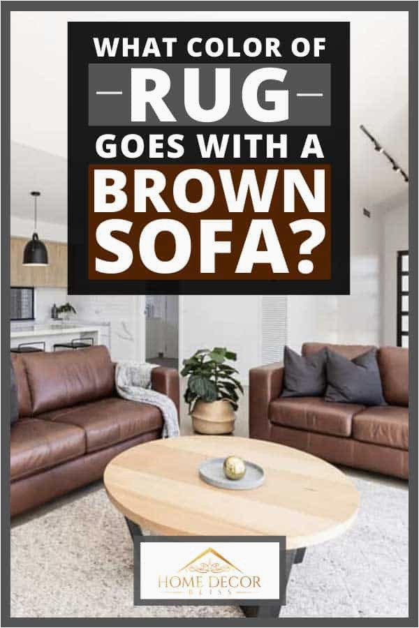 What Color of Rug Goes With a Brown Sofa