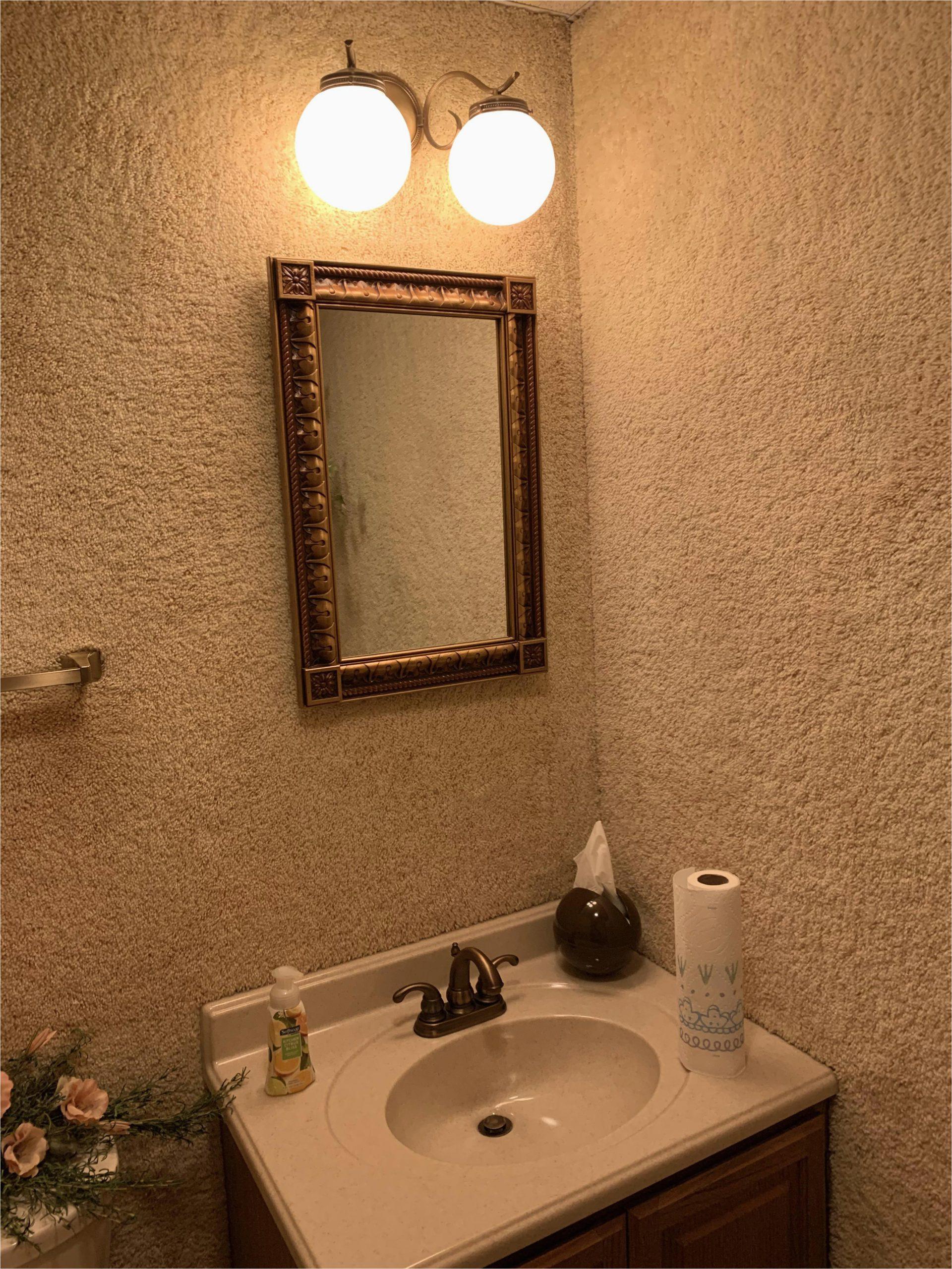 saw the last carpet in the bathroom so i raise