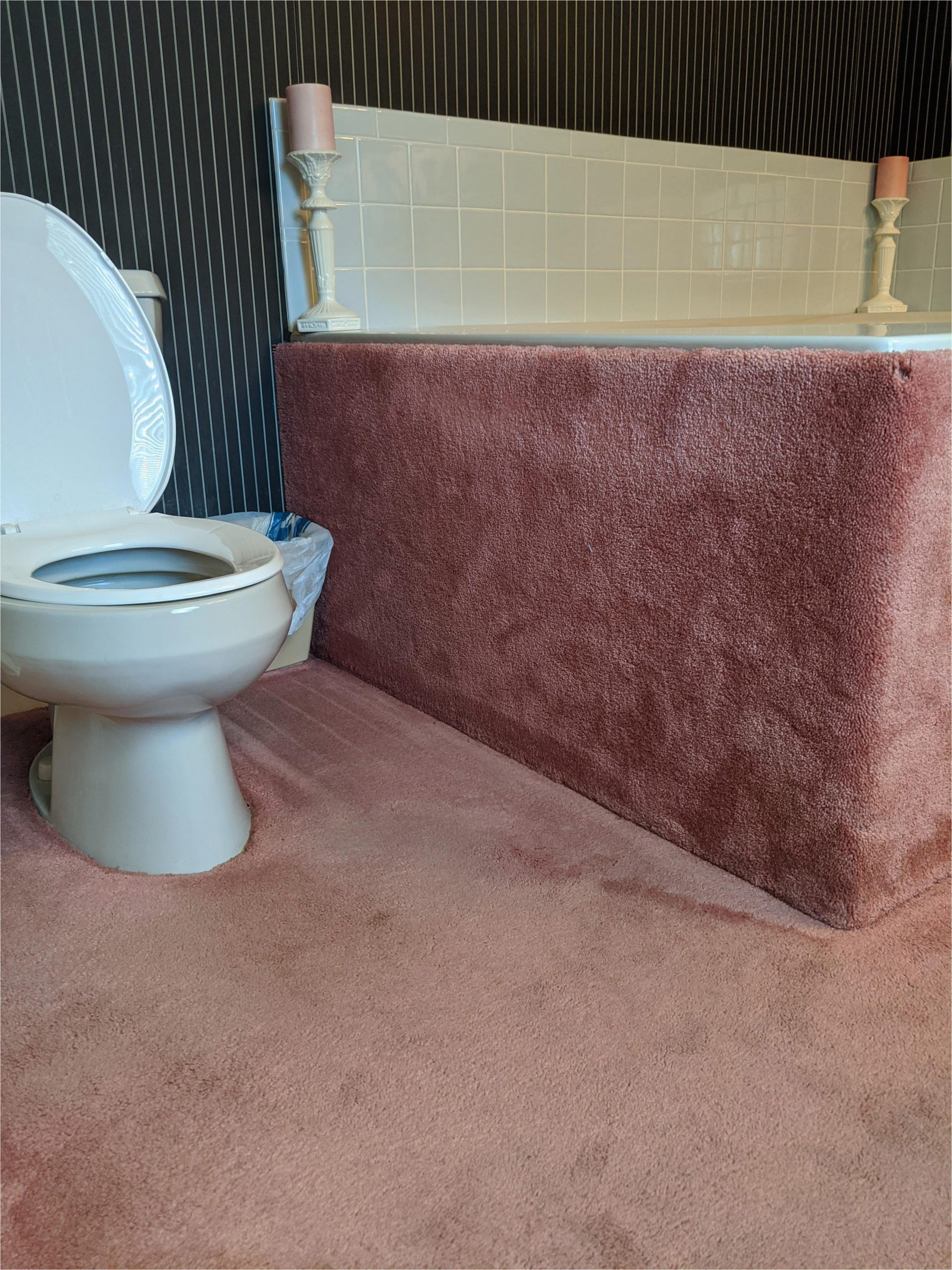 you guys hate carpet in the bathroom i can one up