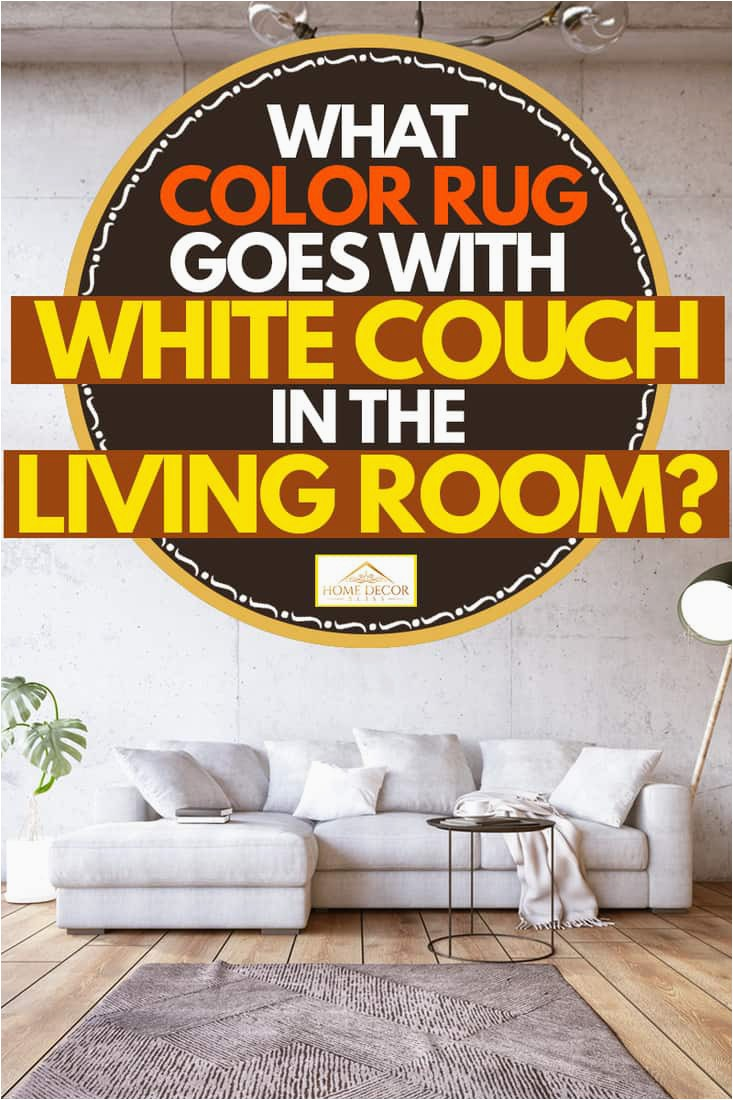 What Color Rug Goes With White Couch in the Living Room