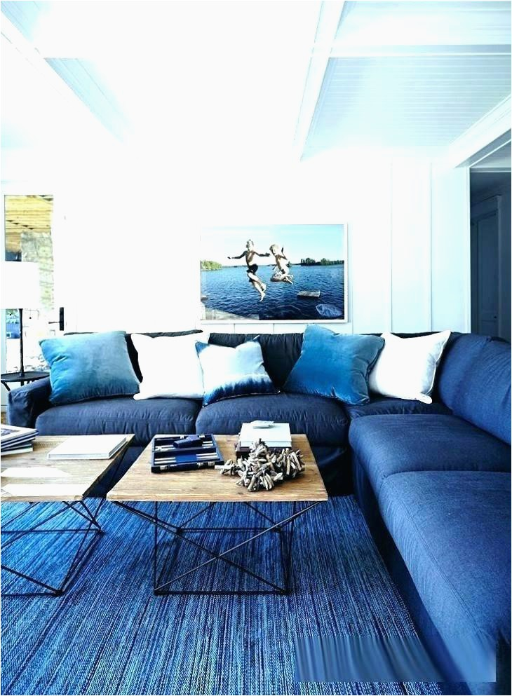 light blue rug living room navy sets and brown for ideas on navy blue rug living room