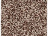 12 Ft Round area Rugs Amazon Shaw Super Shag area Rug Bling Collection Tweed