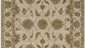 3 Foot by 5 Foot area Rug Rizzy Rugs Ju 0102 3 Foot by 5 Foot Jubilee area Rug