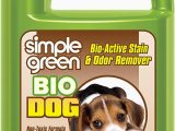 Area Rug Smells Like Dog Simple Green Bio Dog Active Stain & Odor Remover Enzyme Cleaner & Stain Remover for Carpet Rugs & Fabric Eliminates Urine Odor