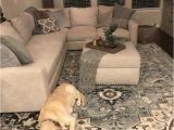 Area Rugs Good for Dogs Pukwana area Rug