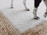 Area Rugs that are Pet Friendly Pet Friendly area Rugs In 2020