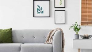 Area Rugs that Go with Grey Couch What Color Rug Goes with A Gray Couch Home Decor Bliss