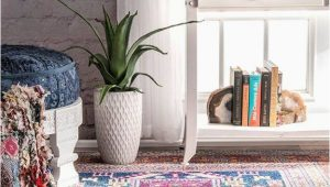 Area Rugs Under 50 Dollars 15 Gorgeous Rugs Under $50 From Amazon that Look Expensive