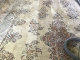 Best area Rug Cleaner Machine Alpine Cleaners the Best Carpet Cleaning Pany In