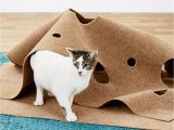 Best area Rugs for Cats with Claws Snugglycat Ripple Rug Cat Activity Play Mat In 2020