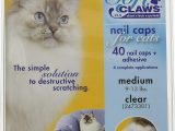 Best area Rugs for Cats with Claws soft Claws Clear Cat Nail Caps