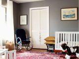 Blue oriental Rug Living Room Portfolio