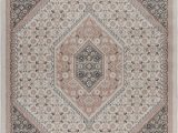 Blush and Gold area Rug Amazon Ivory and Blush Botanical Traditional area Rug