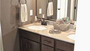 Brown and White Bathroom Rugs Mink and Dover White