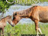 Cabell Carolina Wild area Rug Carolina Shore Spring Summer 2017 by Nccoast issuu