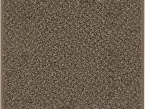 Cut Carpet for area Rug Custom Cut to Fit area Rug with Multiple Colors to Choose From Perfect for First Time Home and Apartments Renters 8 X10 Black & Tan