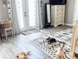Good area Rugs for Dogs Pin On Pet Friendly Rugs