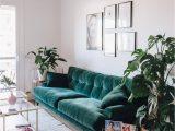 Green Couch Blue Rug Boho Style the Green Velvet sofa 20 Stylish Options Hey