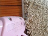 Instabind Do It Yourself Carpet area Rug Binding the Best Alternative to Expensive Carpets Binding A Carpet
