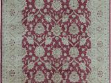 Ohio State Buckeyes area Rug Sultanabad oriental Hand Knotted Wool Wine Gold area Rug