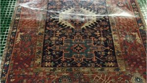 Places to Get area Rugs Cleaned area Rug Cleaning