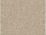 """Solid Color area Rugs 6×9 orian Rugs Next Generation solid Platinum Shag area Rug 7 10"""" X 10 10"""" Tan"""